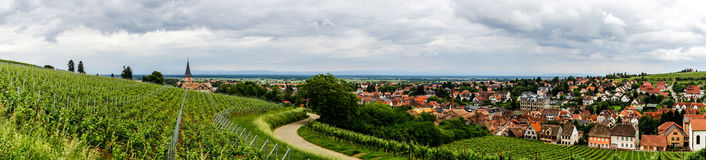 Alsace view from the top of hill Stock Images