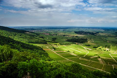 Alsace view from the top of hill Stock Image