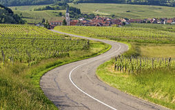 Alsace village, road in vineyard. France. Royalty Free Stock Photography