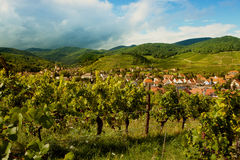 Alsace village in summertime Stock Photo