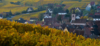 Free Alsace Village, With Vineyard, Riquewhir. France Stock Photos - 81109263