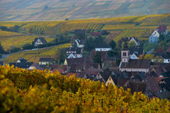 Free Alsace Village, With Vineyard, Riquewhir. France Royalty Free Stock Image - 81120326
