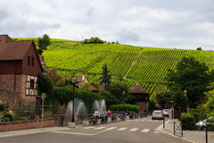 Alsace wine region. Village of Riquewihr, in the Alsace wine region in France, with view on the wine ranks stock images