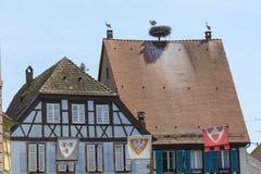 Alsacian Ciconia Nesting on a House Stock Photo