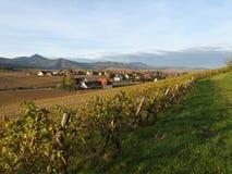 Alsatian landscape. Royalty Free Stock Image