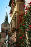 Alsatian village. French village in flower by summer Royalty Free Stock Image