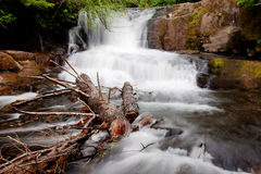 Alsea Falls. In the middle of a Forest in the heart of Oregon USA America Royalty Free Stock Images