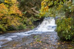 Alsea Falls. In the Oregon coast range between Eugene and Corvallis royalty free stock photography