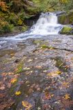 Autumn at Alsea Falls. Alsea falls in the Oregon coast range between Eugene and Corvallis royalty free stock photo