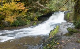 Coast Range Falls. Alsea falls in the Oregon coast range between Eugene and Corvallis stock photos