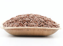 Alsi seed Royalty Free Stock Images