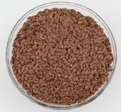 Alsi seed Royalty Free Stock Photos