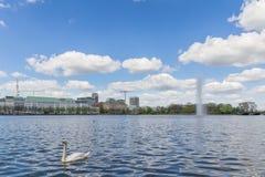 Alster, Hamburg, Duitsland Stock Afbeeldingen