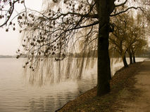 Alster River Stock Photo