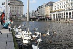 Alsterarkaden Hamburg Stock Photo