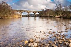 Alston Arches sopra il fiume Tyne del sud Fotografia Stock Libera da Diritti
