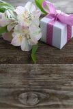 Alstroemeria bianco e regali Immagini Stock