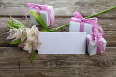 Alstroemeria bianco, regali e cartolina d'auguri Fotografia Stock