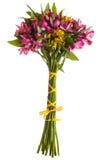 Alstroemeria blommar den isolerade buketten Royaltyfria Foton