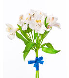 Alstroemeria bouquet Royalty Free Stock Photography