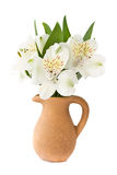 Alstroemeria in a clay carafe. On a white background Royalty Free Stock Photography