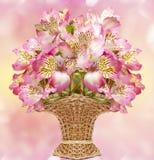 Alstroemeria dentellare del fiore Immagini Stock
