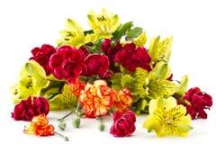Alstroemeria e garofani rossi Fotografie Stock Libere da Diritti