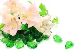 Alstroemeria e vetro verde Fotografia Stock