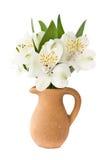 Alstroemeria em um carafe da argila Fotografia de Stock Royalty Free