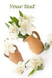 Alstroemeria em um carafe da argila Foto de Stock Royalty Free