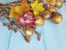 Alstroemeria flower quail eggs willow on blue wooden background. Alstroemeria flower quail eggs willow blue wooden background Stock Photo
