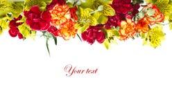 Alstroemeria flowers Royalty Free Stock Photography