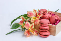 Alstroemeria flowers and macaroons with the taste of coffee on white background. Alstroemeria orange flowers and red macaroons with the taste of coffee on white Stock Image