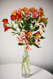 Alstroemeria flowers in vase stock photo