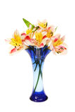 Alstroemeria flowers in a vase Stock Photo