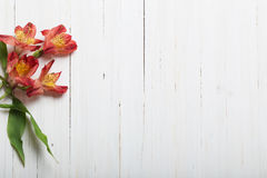 Alstroemeria flowers on  wooden backgrond Royalty Free Stock Images