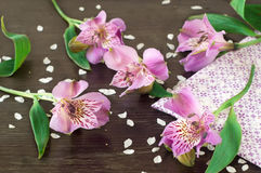 Alstroemeria flowers  on wooden background Stock Image