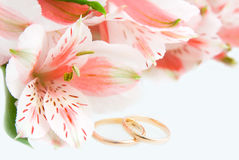 Alstroemeria and gold rings. Bouquet of Alstroemeria and wedding rings on the white Royalty Free Stock Images