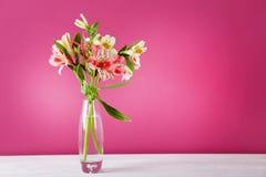 Alstroemeria kwiaty obraz stock