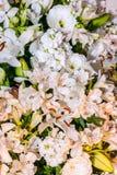 Alstroemeria, Lilium candidum y Eustoma Grandiflorum en el color blanco Imagen de archivo libre de regalías