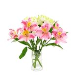 Alstroemeria lily flowers Royalty Free Stock Photography