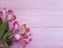 Alstroemeria rocznika rocznicowi oszałamiająco romansowi powitania na różowym drewnianej ramy tle Zdjęcia Stock