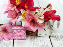 Alstroemeria rosa con il contenitore di regalo Fotografia Stock Libera da Diritti