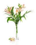 Alstroemeria rosado en un florero imagen de archivo