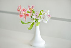 Alstroemeria in vase. Spring Flowers Background Royalty Free Stock Photos