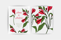 Alstroemeria wedding invitation card. Vector composition of pink flowers illustration. Save the date. Floral alstromeria. Wedding invitation card. Vector Royalty Free Stock Images