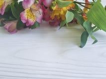 Alstroemeriablume auf einem weißen verzierten hölzernen Hintergrund des Blütenblumenstraußes Stockfotografie