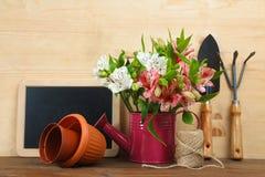 Alstroemerias ed accessori del giardino Fotografie Stock