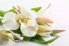 Alstromeria fiorisce nella scatola di legno, accesa candela Fotografia Stock