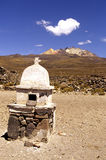 alt- bolivia el terrain Royaltyfria Foton